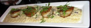 Iron Abbey - Scallops