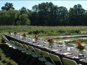 Feast in the Fields2