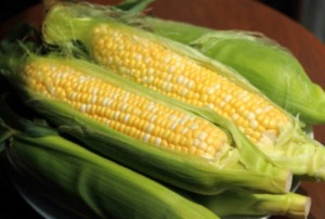Gladstone Tavern - Local Corn Week