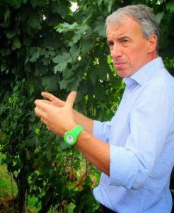 Produttori del Barbaresco - Aldo Vacca