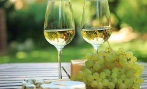 Nicholas - Spring Wine Tasting