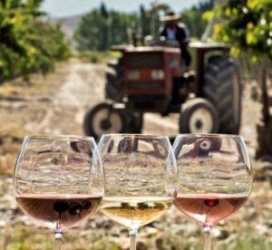 Nicholas - Taste of Spring Wine Tasting